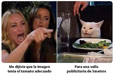 Optimizar imágenes para web - Meme mujer discutiendo con un gato